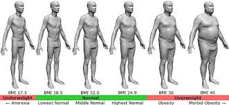 male-obese