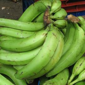 unripe-plantain